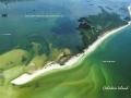 caladesi-island-056