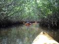 caladesi-island-039